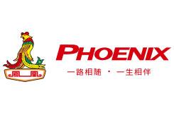 凤凰自行车(phoenix)