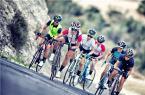 训练、比赛、获胜 崔克女式性能赛自行车
