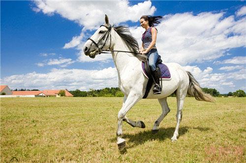 户外运动之骑马