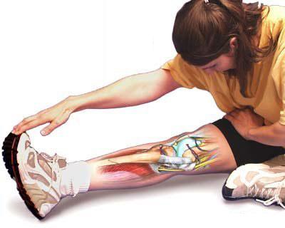骑行腿抽筋的原因有哪些 如何预防腿抽筋