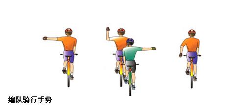 7个自行车编队骑行手语图解(真人演示版)