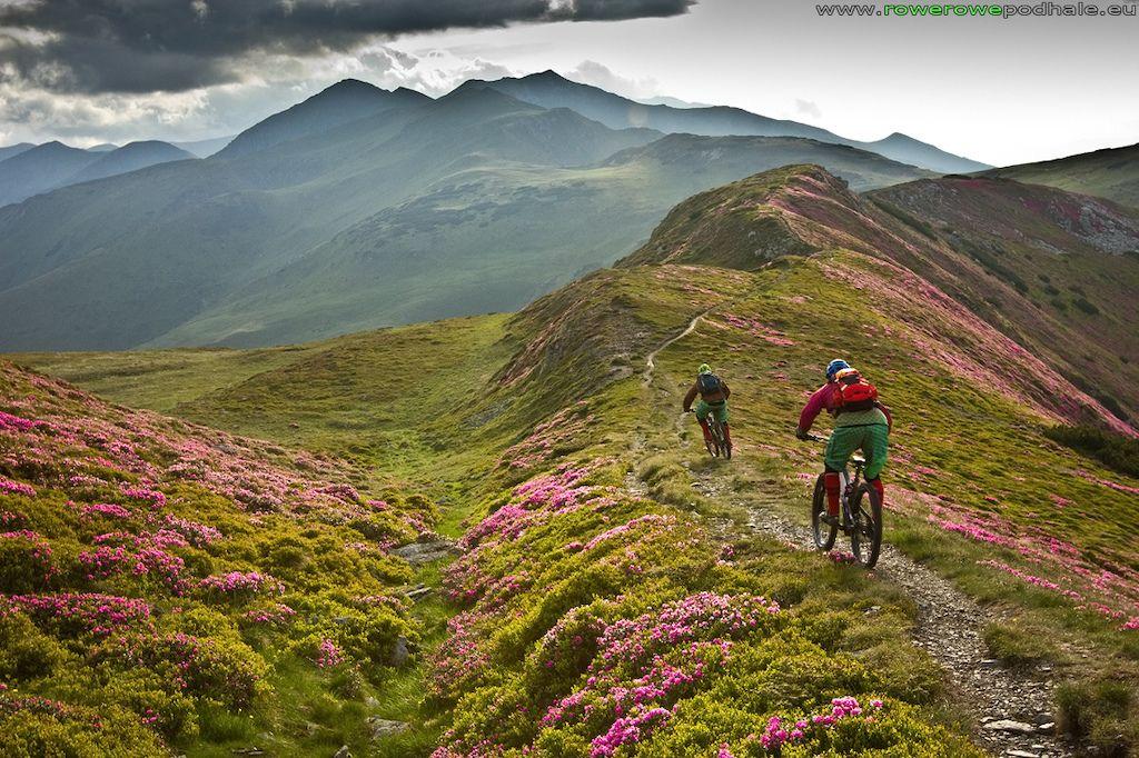 自行车极限运动:高山自行车越野美景实拍图 图10