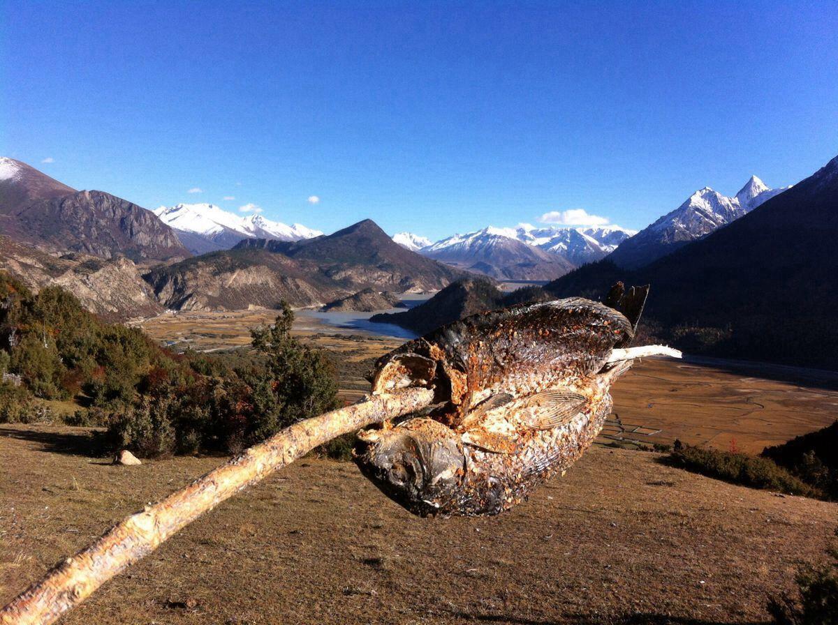 骑车去西藏:骑友骑行西藏美景图片分享 图1