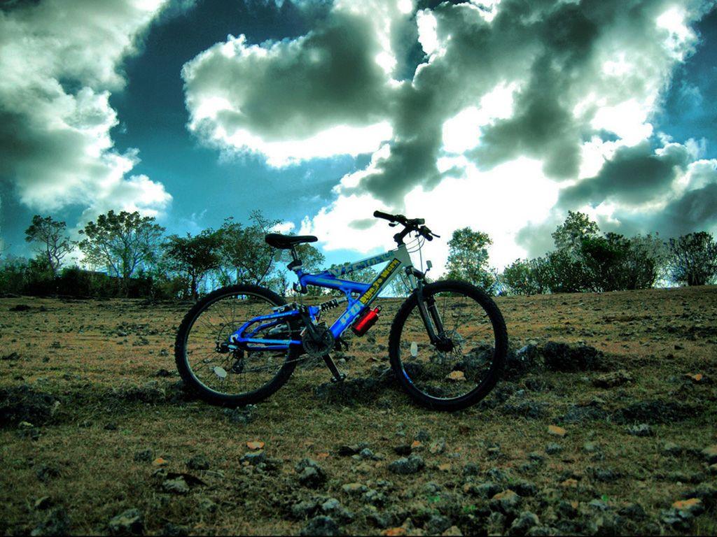 就是要不一样,个性十足的死飞自行车图片分享 图4