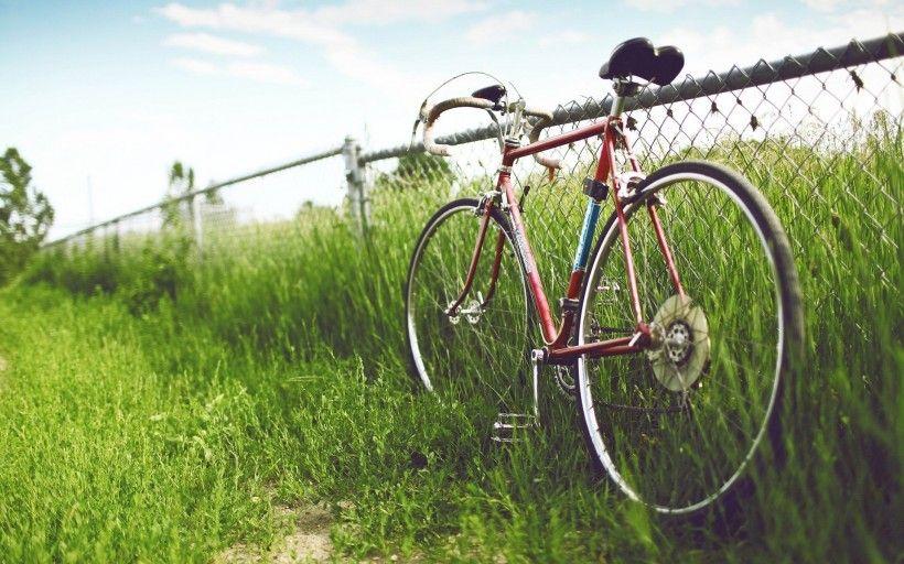 老式自行车唯美图片与情侣唯美意境图片分享 图1
