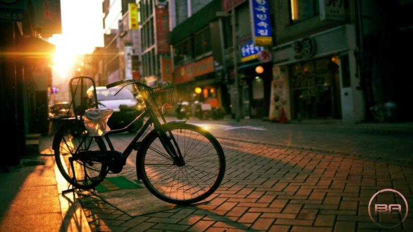 老式自行车唯美图片与情侣唯美意境图片分享 图14
