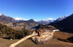 騎車去西藏:騎友騎行西藏美景圖片分享
