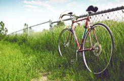 老式自行車唯美圖片與情侶唯美意境圖片分享