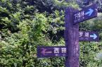 深圳短途騎行路線推薦:深圳梅林坳騎行