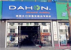 Dahon(大行)榆林市靖边县专卖店